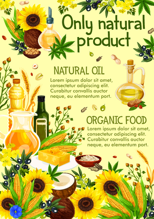 Natural oil made of sunflower seeds, olive and corn, coconut and wheat spikes, peanut. Vector virgin oils of natural plants, nuts and herbs, vegetables. Jar, bottle and jug with liquid seasonings