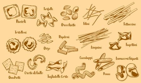 Popular italian pasta types. Vector ravioli and farfalle, orecchiette and filini, fettuccine and tortelloni, orzo and rigatoni, linguine and fagottini. Quadrelli and creste di gallo, cavatappi and penne sketch