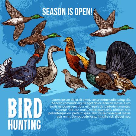 Ptaki polują otwarty sezon wektor plakat. Myśliwska sportowa przygoda projekt dzikiego ptactwa kaczka i paw, cietrzew lub cietrzew i głuszec z gęsią, przepiórką i leszczyną, bażantem i kuropatwą