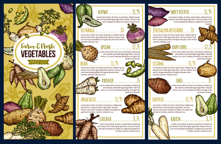 Root vegetables and exotic veggies market price list. Vector sketch kaywa, rutabanga or apium and parsnip tuber, arracacia and cassava, sweet potato and little corn, chayote and Jerusalem artichoke