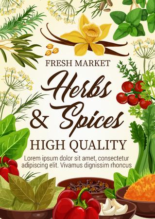 Cartel de vector de mercado de granja de hierbas y especias, ingredientes culinarios naturales y condimentos para cocinar. Vector de vainilla, albahaca o pimiento, tomates y laurel, apio y ajo, estragón y romero