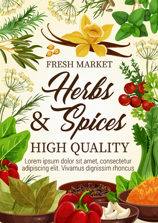 Herbs and spices farm market vector poster, natural culinary ingredients and cooking seasonings. Vector vanilla, basil or bell pepper, tomatoes and bay leaf, celery and garlic, tarragon and rosemary