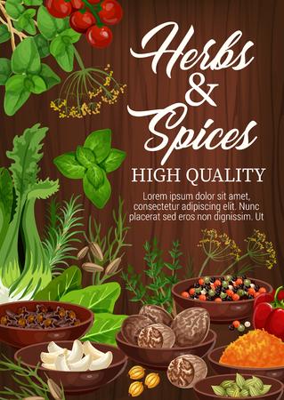 Zioła i przyprawy, składniki kulinarne i przyprawy ziołowe do gotowania. Wektor czosnek, bazylia lub indyjska kurkuma kurkuma i szafran, seler lub pomidor i mak z anyżem i papryką chili