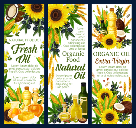 Vegetable oils of sunflower, olive and nuts. Vector organic farming products of coconut butter and hemp seed, hazelnut and corn, colza and canola. Plants, bottles and pitcher jars