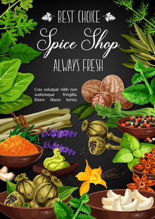 Herbs and spices poster of culinary ingredients and cooking herbal seasonings. Vector garlic and nutmeg, basil or celery, poppy seed and anise star, chili pepper, Indian turmeric curcuma and saffron