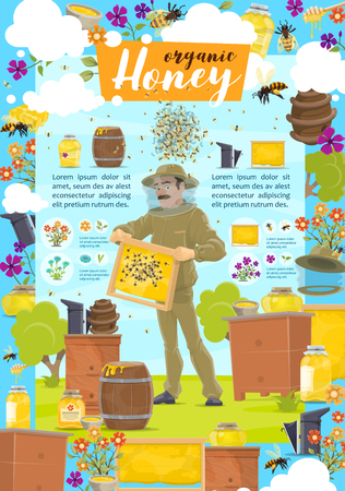 Honey beekeeping and organic natural honey product, agriculture. Vector beekeeper man in protective uniformat beehive apiary taking honey, honeycomb and bees on flower meadow Banco de Imagens - 127635295