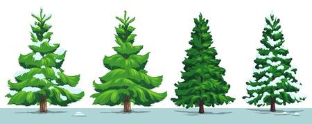 Albero di Natale con la neve. Vector verde pino, abete e abete rosso con rami innevati nella foresta invernale, isolato su bianco. Design per le vacanze di Natale e Capodanno