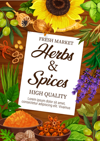 Seasoning herbs and spices, condiments vector poster. Poppy and leek, basil and mint, sunflower seeds and bay leaf, curry in bowl and lavender, cinnamon and anise, ginger and olive from market