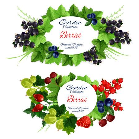 Obst- und Beerengarten ernten Poster isoliert. Grüne belaubte Zweige mit rundem Abzeichen für natürlichen Bio-Lebensmittelvektor. Erdbeere und Himbeere, Heidelbeere und rote Johannisbeere, Stachelbeere und Briar