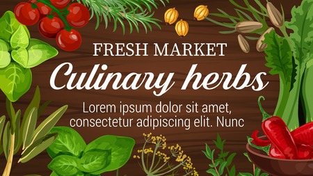 Herbs for culinary from market banner with seasonings for dressing. Cherry tomatoes and rosemary, gooseberry and thyme, salad and chili pepper, mint and dill. Basil and bay leaves for cooking vector