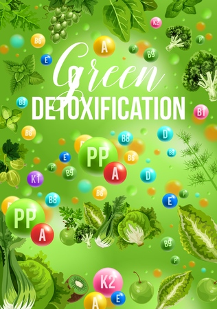 Color detox diet poster of green food day. Cabbage and broccoli, grapes and gooseberry, kiwi and apple, mint and basil. Proper nutrition for detoxification of vegetables and fruits or berries vector Illustration