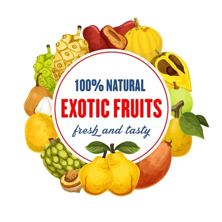 Fruit from exotic countries round icon. Red pear and santol, loquat and guava, quince and mango, longan and sugar apple, passionfruit and mangosteen, morinda. Vegetarian food shop or market vector