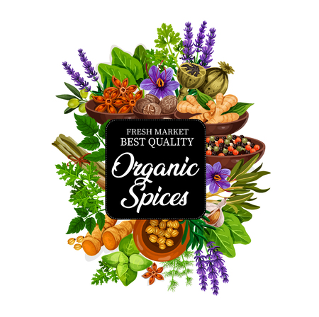 Spice of natural organic plants and herbs or seeds. Lavender and basil, poppy and ginger, nutmeg and anise, olive and pepper mix. Rosemary and garlic, dill and parsley, mint and saffron vector