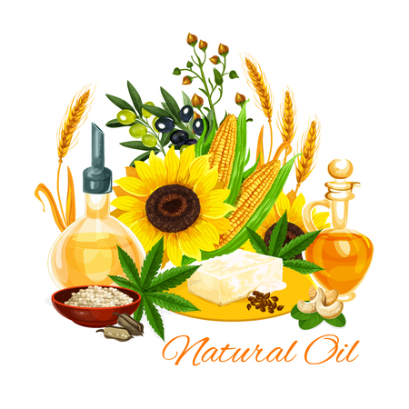 Natural oil and butter variety poster. Sunflower seeds, olive and corn, wheat spikes and hemp, cashew and rice. Vector of virgin oils used in cosmetics and cooking for frying food and dressing salads