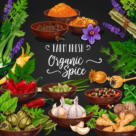 Seasoning herbs and spices or condiments poster. Rosemary and thyme, basil, dill and parsley, and poppy, curry and lavender or mint, cinnamon, red chilli pepper, ginger and garlic, gooseberry vector