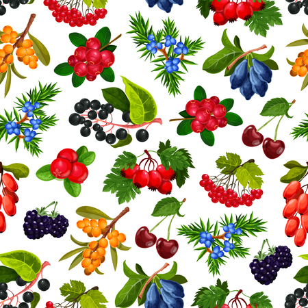 Berries seamless pattern vector. Endless texture of ripe cherry and bilberry, rosehip and dogrose, buckthorn and cranberry, juniper and rowanberry. Background ripe summer berries isolated vector Ilustração