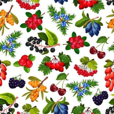 Nahtloser Mustervektor der Beeren. Endlose Textur von reifen Kirschen und Heidelbeeren, Hagebutte und Heckenrose, Sanddorn und Preiselbeere, Wacholder und Vogelbeere. Isolierter Vektor der reifen Sommerbeeren des Hintergrundes