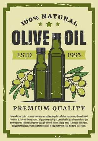 Vegetable oil of olives in bottle retro poster. Seasoning for cooking made of natural organic product sealed in container. Healthy nutrition and salad dressing liquid vintage brochure vector