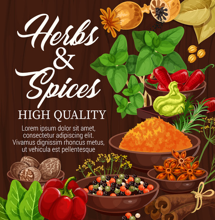 Herbs and spices on wooden background, food condiments and seasonings. Vector chili pepper and cinnamon, basil, star anise and nutmeg, thyme, rosemary and paprika, bay leaf, turmeric powder, dill