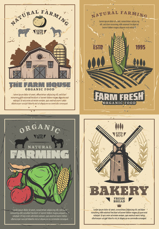 Farming and agriculture vintage posters of organic food, natural fruits and vegetables growing, cow and chicken animal, meat and milk farm. Vector village barn, harvested field landscape and windmill Иллюстрация