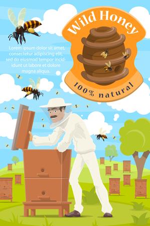 Apicultor en colmenar, cartel de granja de apicultura de miel. Hombre de apicultor de dibujos animados vector tomando miel orgánica natural en panal de colmena