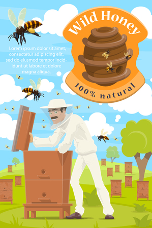 Beekeeper at apiary, honey beekeeping farm poster. Vector cartoon beekeeper man taking natural organic honey in honeycomb from beehive