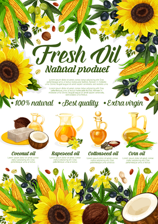 Natural cooking oils of sunflower, olive or coconut and cottonseed. Vector extra virgin oil bottles and jars with organic avocado, hemp seed or hazelnut and corn oil Illustration