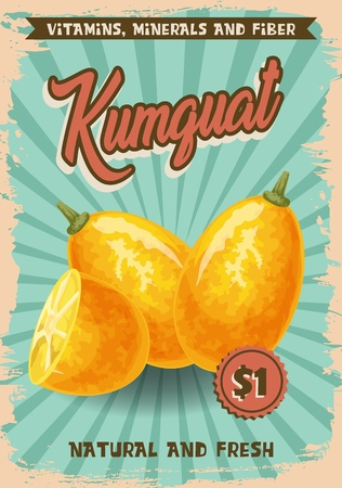 Kumquat exotic fruit poster with farm market price. Vector agriculture tropical cumquat cut slice and whole fruit with natural vitamins, minerals and fiber nutrition