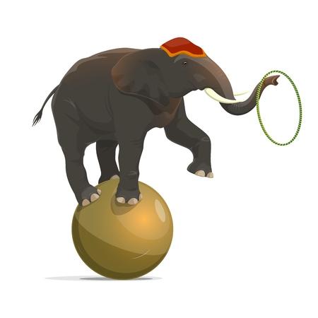 Elefante de circo balanceándose sobre una pelota y haciendo malabares con el aro en el tronco con la pierna levantada. Vector aislado rendimiento equilibrista animal de circo