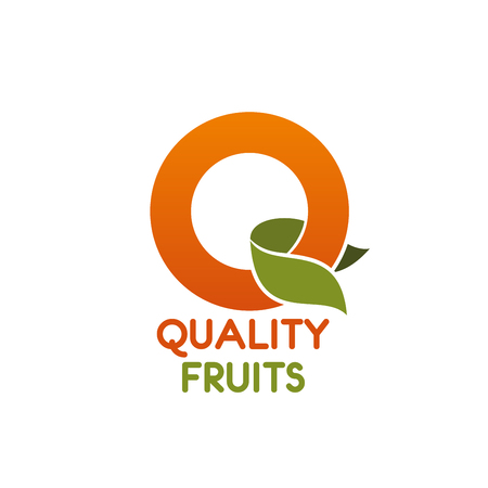 Letter Q icon for quality fruits shop or organic food and juice drink package design. Vector orange fruit and leaf letter Q symbol for farm market or nutrition industry company