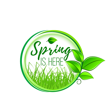 Spring is here green leaf icon for springtime wishes or seasonal holiday greeting card design. Vector isolated green leaf and grass with plant sprout of blooming flower for spring time season