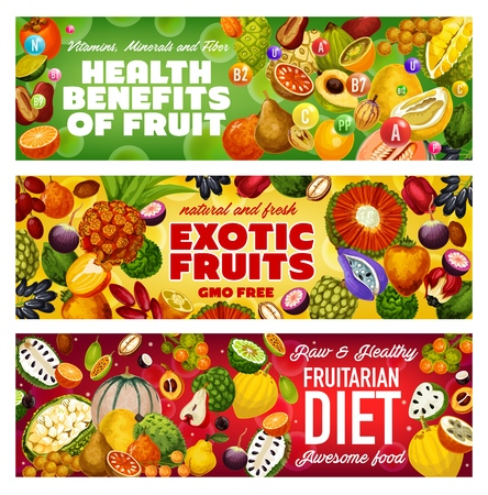 Tropical fruits of fruitarian diet, exotic berries and raw vegetarian food health benefits. Vector cantaloupe, sweetsop and cherimoya, persimmon, pomelo and apple cashew, dates, soursop and bergamot Stock Vector - 126480268
