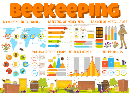 Beekeeping infographics with honey products and bee breeding graphs. Pie charts with beekeeper and apiary beehive, flower diagram of honeybee and honeycomb and apiculture statistic world map. Vector Ilustração
