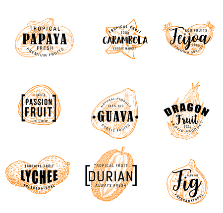 Exotic fruits lettering of tropical berries sketches. Papaya, feijoa and fig, durian, passion and dragon fruits, guava, lychee and carambola vector icons. Food and natural juice drink label design Illusztráció