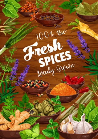 Spices and herbs food ingredients with vegetable seasonings and condiments on wooden background. Vector parsley, mint and basil, chili pepper, garlic and ginger, dill, rosemary, turmeric and anise Ilustracja