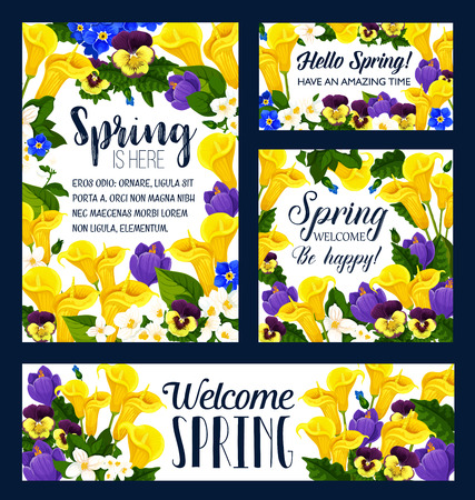 Spring Season flower bouquet greeting card and banner template. Crocus, pansy and calla lily, blooming branch of jasmine, green leaf and garden plant frame for Springtime Holiday themes design Ilustracja