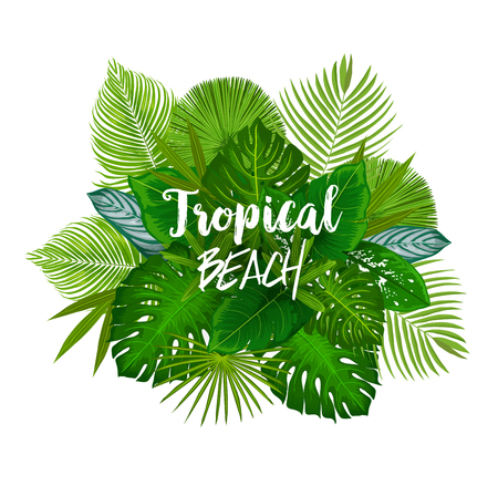 Tropical beach poster with bunch of green palm leaves. Leaf of exotic tree and jungle plant with monstera, fan palm, banana tree and fern for summer vacation and holidays design Illustration