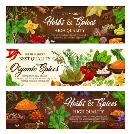 Herbs and spices, condiments and seasonings vector. Basil and vanilla, pepper and cinnamon, nutmeg and cardamom, wasabi, ginger, celery and garlic. Poppy and bay leaf, saffron and anise star