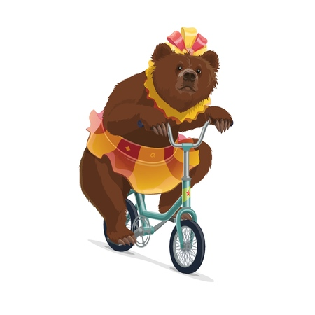 Bear in costume on bicycle from big top circus show. Isolated vector trained wild animal with bow in skirt riding bike. Show or performance, brown bear character performing as trickster on vehicle