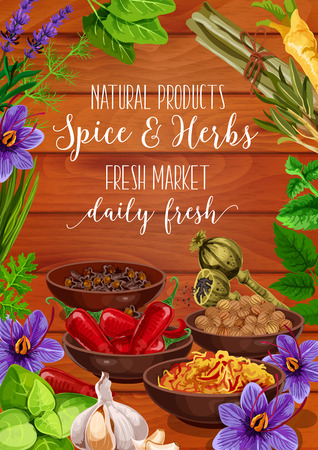 Seasonings of herbs and spices, cooking greens, grocery shop. Vector chili pepper and Korean carrot, nutmeg and poppy, clove and saffron. Garlic and melissa, basil and dill, rosemary and lavender