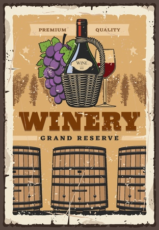 Premium wine grand reserve vintage store poster. Winemaking and winery, wine bottle wooden barrels in cellar vault with grape vine harvest and wineglass Illustration