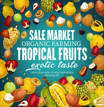 Exotic tropical fruits vector frame. Durian, cherimoya, mangosteen and quince, litchi and pomelo, sapodilla and sugar apple. Ackee and tamarind, noni and canistel, organic farming and agriculture