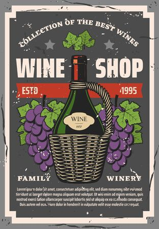 Wine shop, winemaking and winery. Vector bottle in basket, grape bunches, brut sort, vine and tasting process. Craft alcohol drink of natural fruits or berries. Grapery organic beverage Illustration