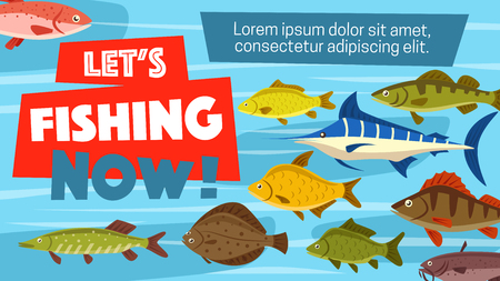 Permis de pêche sportive et affiche de temps de capture de poisson. Aventure de pêcheur de vecteur dans la pêche en mer, en mer ou en lac de marlin, de plie ou de carpe et de saumon avec brochet et perche ou brème