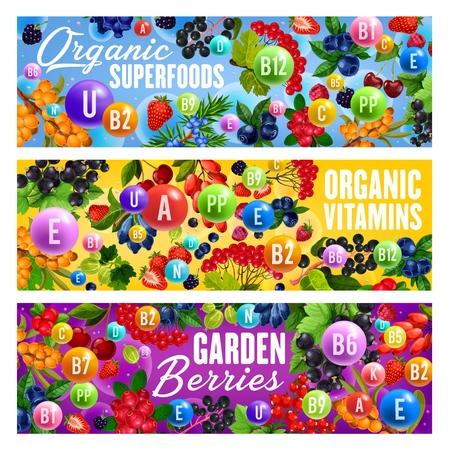 Bacche piene di vitamine, superfood biologico. Vector e mirtillo rosso, fragola e ciliegia e goji, ribes e lampone. Cibo vegetariano e vegano, nutrizione dietetica verdure Vettoriali