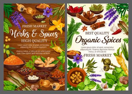 Herbs and spices, grocery store or seasonings shop. Vector basil and vanilla, pepper and cinnamon, nutmeg and cardamom, anise and ginger, celery and garlic. Poppy and bay leaf, saffron and lavender