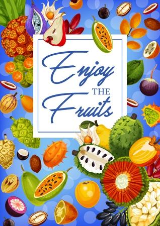 Exotic natural fruits, grocery store or market products. Vector durian and soursop, mangosteen and quince, sapodilla and sugar apple. Ackee and akebia, noni and peppino, longkong and pandaus, caimito