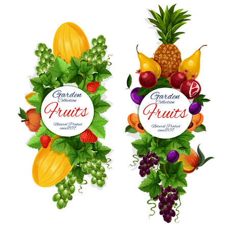 Fresh natural fruits icons, garden harvest. Vector pineapple and melon, pomegranate and peach, strawberry and grapes, pear and plum, apricot and nectarine. Vegetarian food, organic farming, isolated
