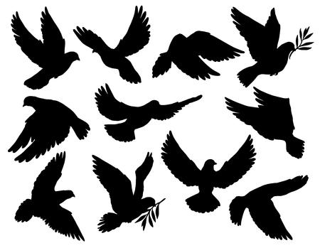 Paloma siluetas con rama de olivo, símbolo de la paz. Paloma de vector con alas extendidas volando con tallo de laurel en pico. Pájaro sagrado en el cristianismo, libertad y pureza, vuelo de poses animales aislados