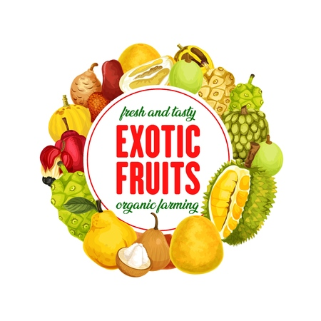 Exotic fruits banner, organic farming, healthy nutrition. Vector marindo or noni, durian and sala, mamey and marula, platonia and bael. Chompoo and ackee, pomelo and pepino, quince and sugar apple